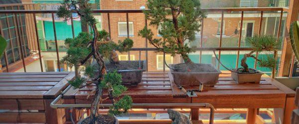 Riego y aspersión para balcón